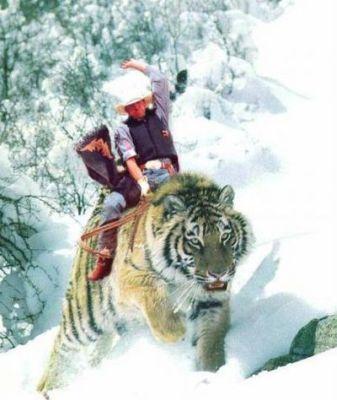 cowboy-riding-a-tiger.jpg