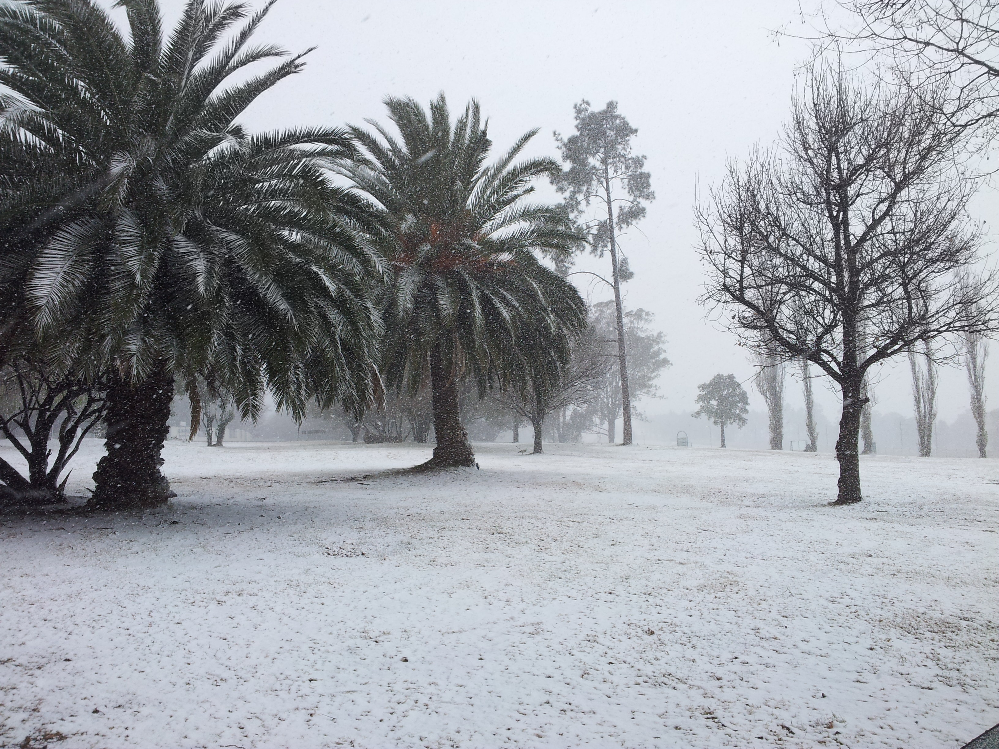 Snow Spotters – Snow in Modderfontein, Roshnee, Vaal and other parts of South Africa