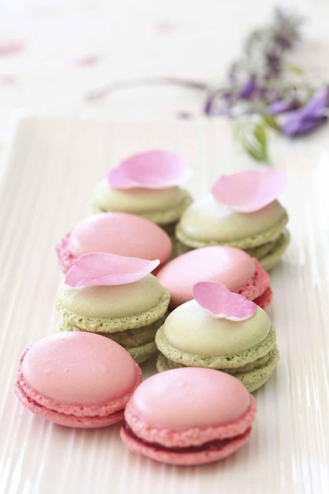 lila bultel macaron 2