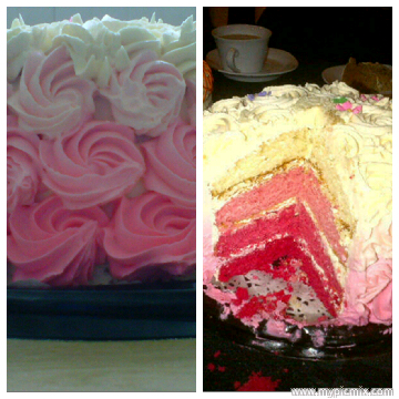 saliha frosted nostalgia 2picmix- pink layer cake