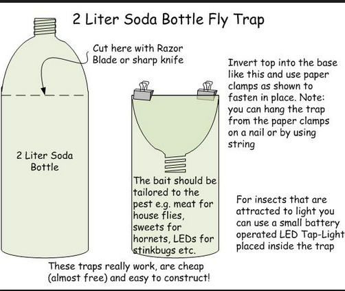 home made fly trap