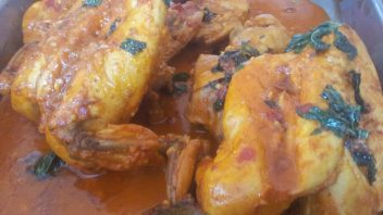 Rashida Mohomed – Mint Chicken